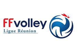 A.G. Ligue de Volley Ball le 28 novembre 2020 : Florence Noël réélue Présidente